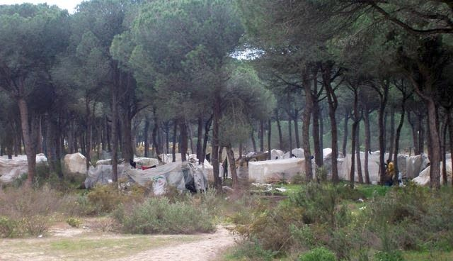 Cooperativas Huelva